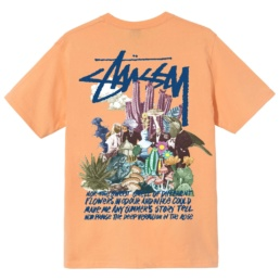 stussy-psychedelic-tee-peach-back